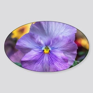 Lavender Pansy Sticker (Oval)