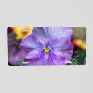 Lavender Pansy Aluminum License Plate