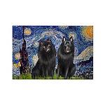 Starry Night & Schipperke Rectangle Magnet (10 pac