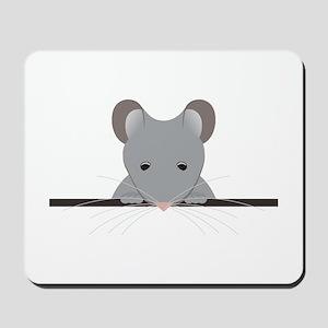 Pocket Mouse Mousepad