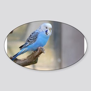 Blue Budgie Sticker
