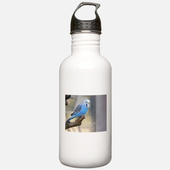 Cute Yellow budgie Water Bottle