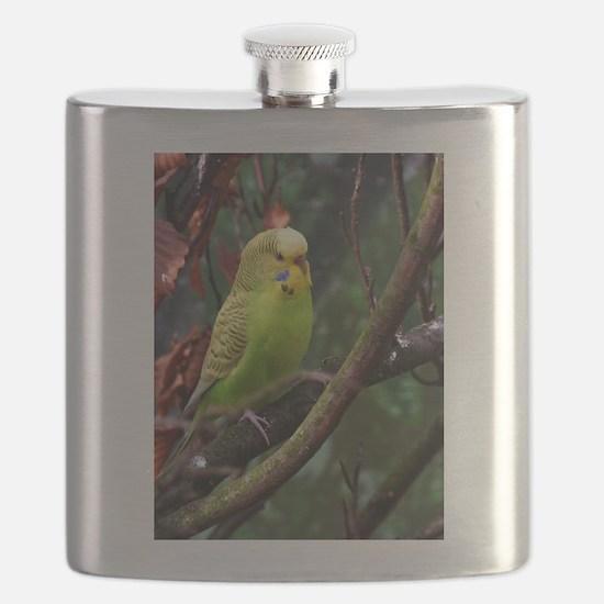 Cute Green wing Flask