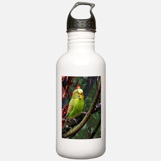 Unique Yellow budgie Water Bottle