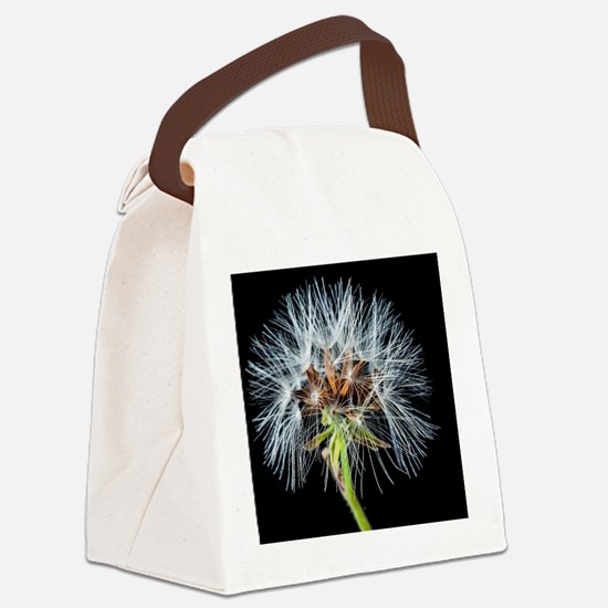 Cool Dandelion seeds blowing in the wind Canvas Lunch Bag