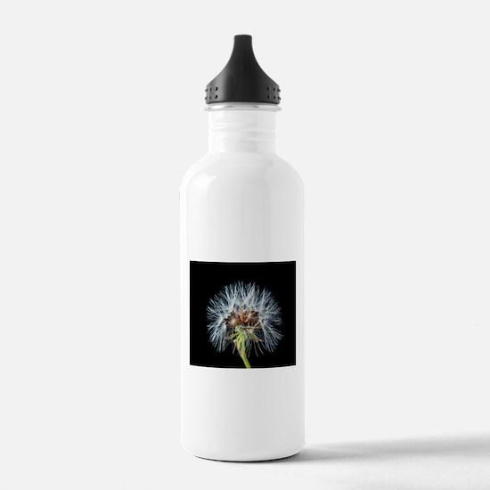 Cute Flying seeds Water Bottle
