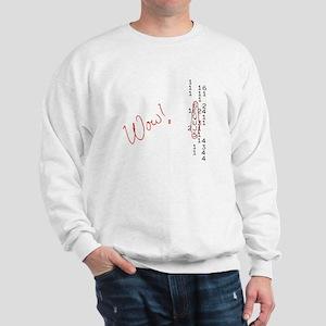 Wow Signal SETI Message Sweatshirt