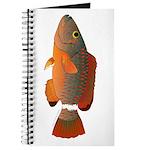Ringtail Maori Wrasse Journal