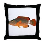Ringtail Maori Wrasse Throw Pillow