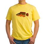 Ringtail Maori Wrasse c T-Shirt