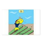 Fish Farmer Postcards (Package of 8)