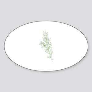 Rosemary Herb Plant Sticker