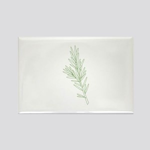 Rosemary Herb Plant Magnets