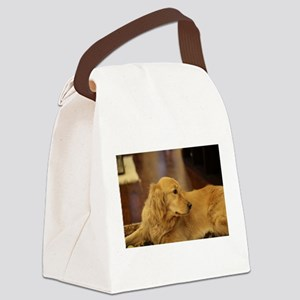 Nala inside during holiday Canvas Lunch Bag