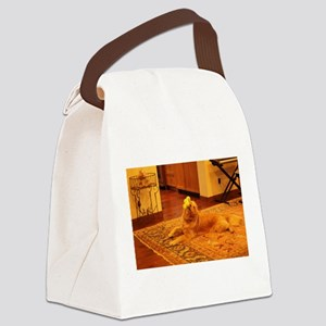 Nalaplaying with a toy Canvas Lunch Bag
