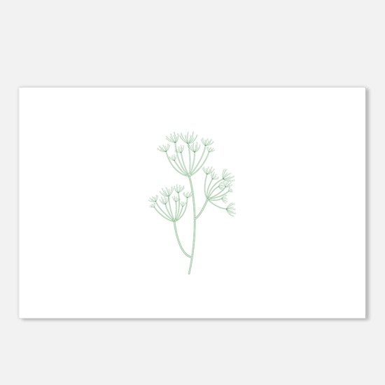 Dill Herb Plant Postcards (Package of 8)