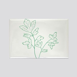 Parsley Herb Plant Magnets