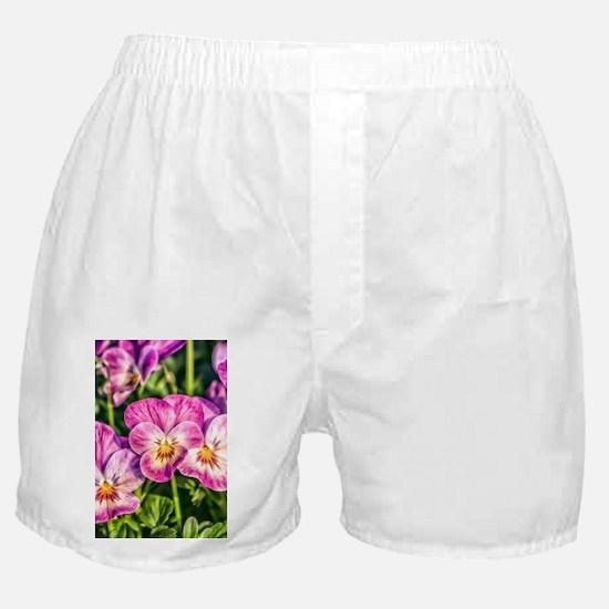 Pink Pansies Boxer Shorts