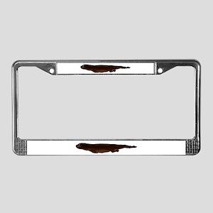 Sea Otter Swimming 2 License Plate Frame