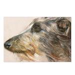 Scottish Deerhound Pastel Postcards (package Of 8)