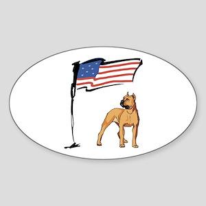 USA Pit Oval Sticker