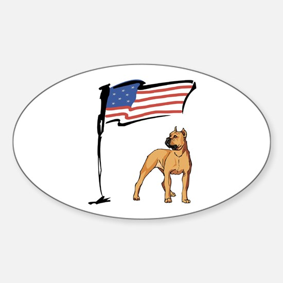USA Pit Oval Decal