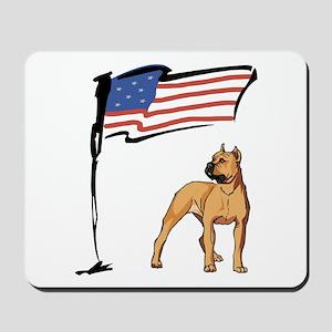 USA Pit Mousepad