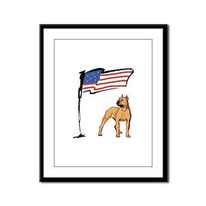 USA Pit Framed Panel Print