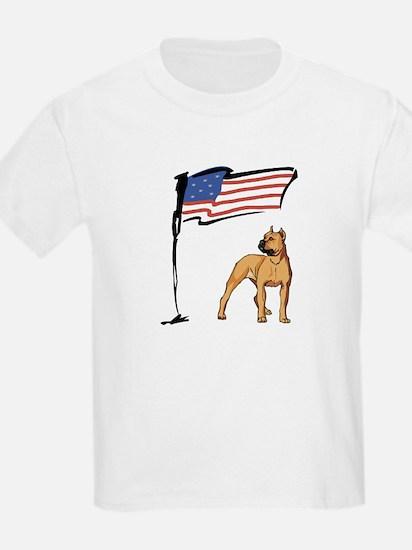 USA Pit T-Shirt