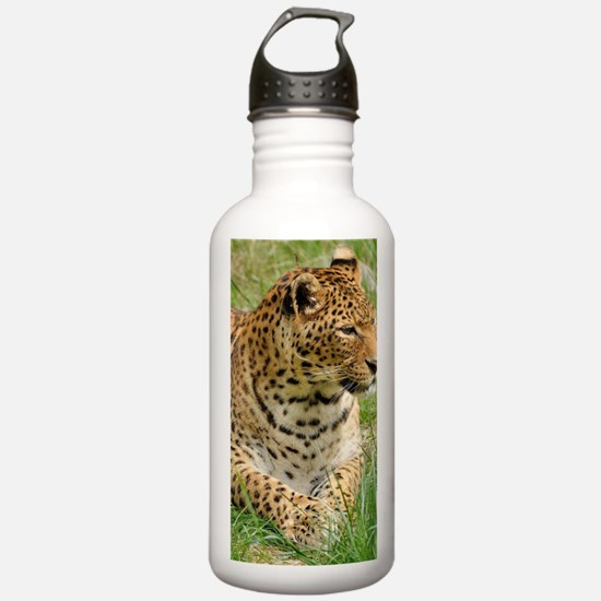 Cute Leopard print Water Bottle