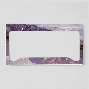 Shells License Plate Holder