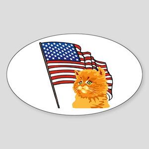 USA Kitten Oval Sticker