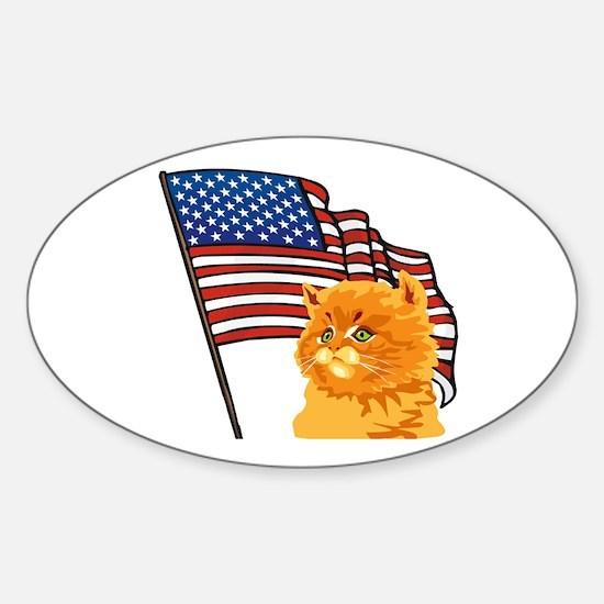 USA Kitten Oval Decal
