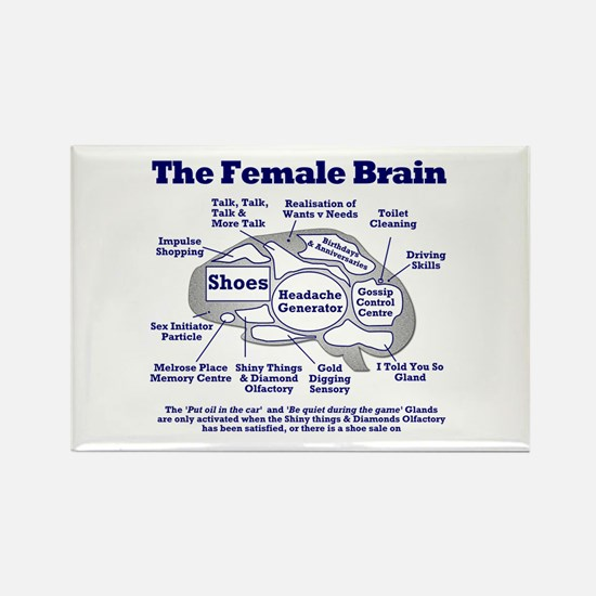 The Thinking Woman's Rectangle Magnet
