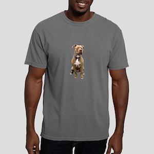 Pit Bull #1 (bw) Mens Comfort Colors Shirt
