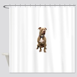 Pit Bull #1 (bw) Shower Curtain