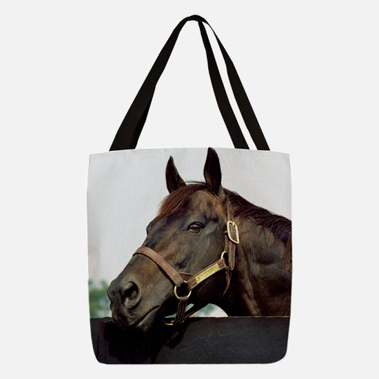 SEATTLE SLEW Polyester Tote Bag