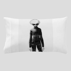 Skinny Bob Grey Alien Pillow Case
