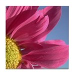 Pink Gerbera Daisy Tile Coaster
