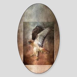 Evening Hawk Sticker (Oval)