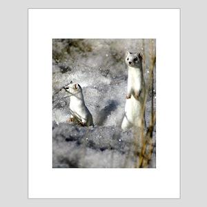 Christmas Labrador Small Poster
