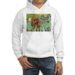 Irises & Ruby Cavalier Hooded Sweatshirt