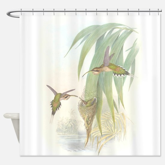 Hummingbirds & Nests Shower Curtain