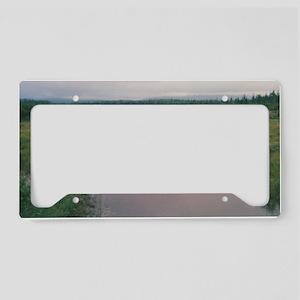 Tom's Bog License Plate Holder