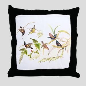 Gould Sunbird Birds Throw Pillow