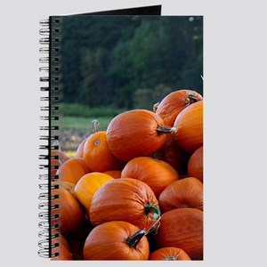 Bundle of pumpkins Journal