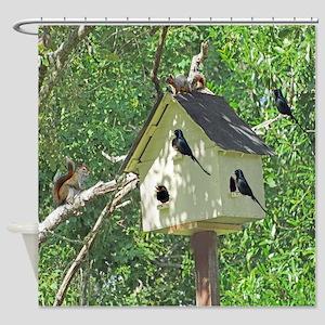 Cute Birdhouse Shower Curtain