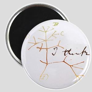 Darwins tree of life: I think Magnets