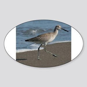 sandpipe blue bird Sticker