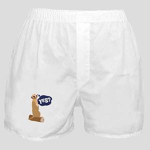 Yes? Boxer Shorts